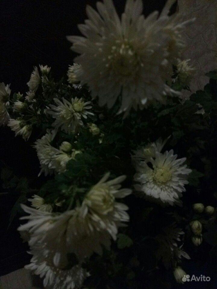 Хризантема белая и сиреневая, мята, шалфей и мн-е купить на Зозу.ру - фотография № 6
