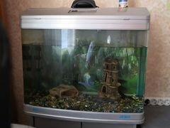 Продам аквариум, украшения для аквариума есть водо