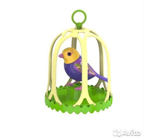 Птички digibirds