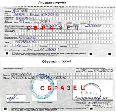 Временная регистрация по городу химки авторы медицинских книжек