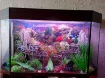 Панорамный аквариум на 120 л