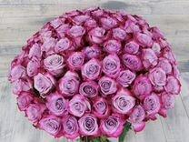 Розы Эквадор 60-70 см. Сорта как на фото