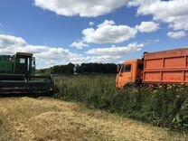 Доходное фермерское хозяйство